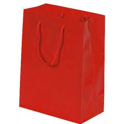 Picture of Glossy Euro-Tote Bag, 16x6, Case of 100 by Smart Fixtures
