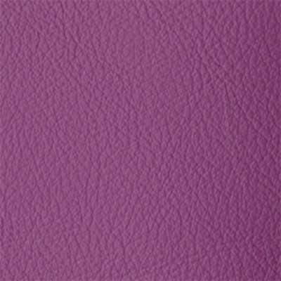 Dazzle Elmosoft Leather for Amia Chair by Steelcase (482)