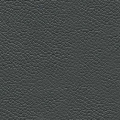Mammoth Cave Volo Leather for Boeri Sofa by Knoll (KNCB2)