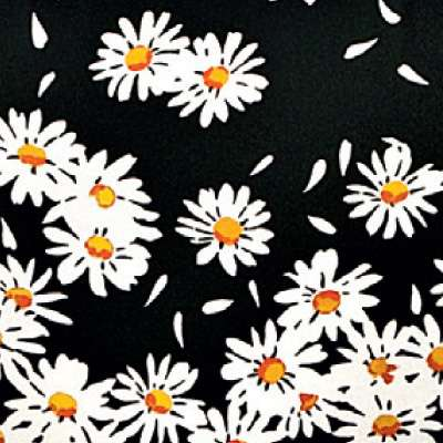 Moschino Print Daisies for Mademoiselle Printed Chair by Kartell (KTMMC)