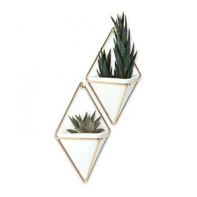Picture for Small Trigg Wall Vessel by Umbra