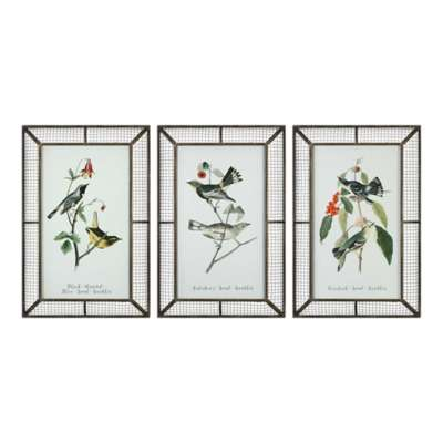 Picture for Warblers Wall Art, Set of 3 by Uttermost