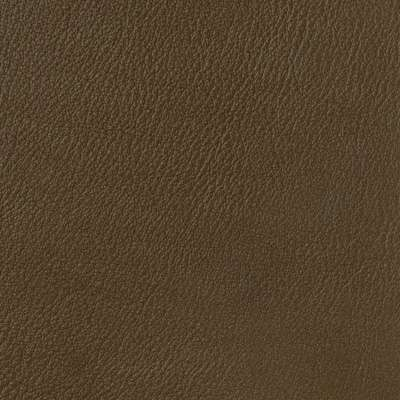 Chocolate for Alessandro Sofa by American Leather (ALESSANDROSF)