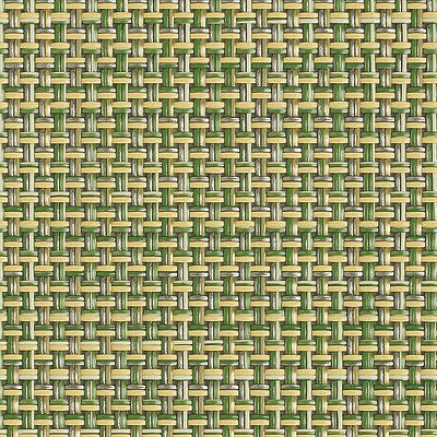 Dill for Minibasketweave Pattern Placemat (CHRTMBAS)