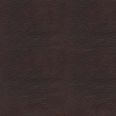 Chocolate Paloma Leather for Stressless Modern Ottoman, Large by Ekornes (STMODOTTLRG)