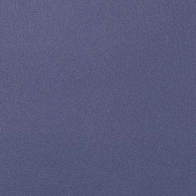 Blueberry ColorGuard for Eames Sofa Compact by Herman Miller (473)