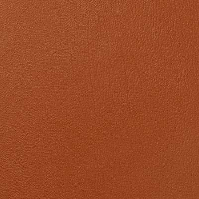 Manzanita ColorGuard for Eames Sofa Compact by Herman Miller (473)