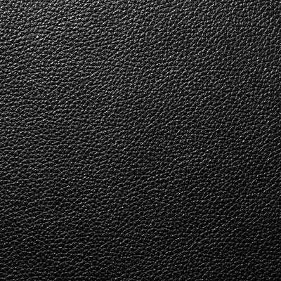 Black All Grain Leather for Eames Sofa by Herman Miller (ES108)