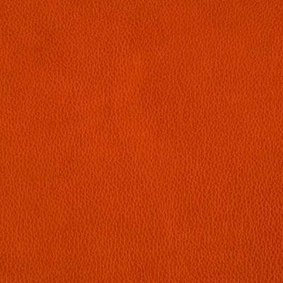 Zinnia All Grain Leather for Eames Lounge Chair and Ottoman by Herman Miller (ES67071)