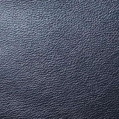 North Star Metallic Leather for Eames Soft Pad Ottoman by Herman Miller (EA423)