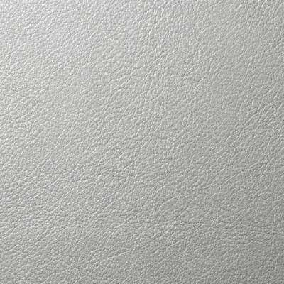 Silver Lining Metallic Leather for Eames Soft Pad Ottoman by Herman Miller (EA423)