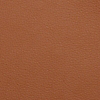Request Free Castello Vicenza Leather Swatch for the Barcelona Couch by Knoll