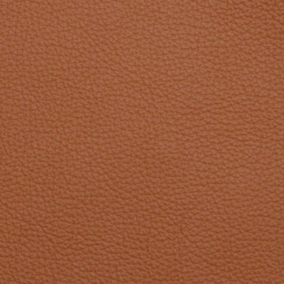 Castello Vicenza Leather for Barcelona Couch by Knoll (KN258L)