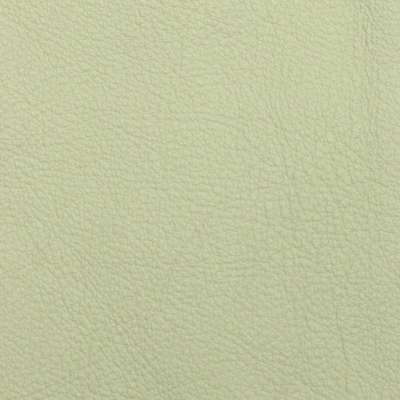Buff Elmosoft Leather for Amia Chair by Steelcase (482)