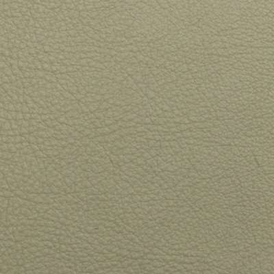 Cameo Elmosoft Leather for Amia Chair by Steelcase (482)