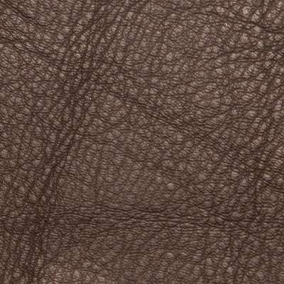 Cinder Elmosoft Leather for Amia Chair by Steelcase (482)