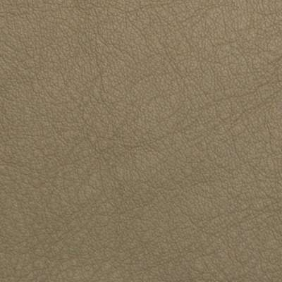 Desert Elmosoft Leather for Amia Chair by Steelcase (482)