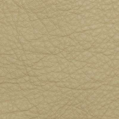 Khaki Elmosoft Leather for Amia Chair by Steelcase (482)