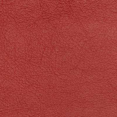 Red Birch Elmosoft Leather for Amia Chair by Steelcase (482)