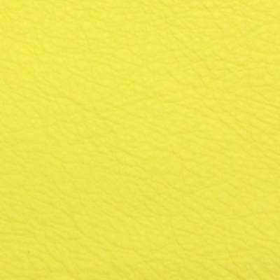 Sunshine Elmosoft Leather for Amia Chair by Steelcase (482)