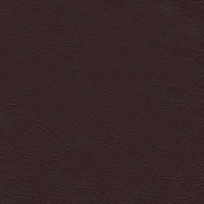Mahogany Leather for Amia Chair by Steelcase (482)