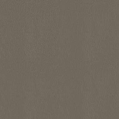 Rocky Leather for Amia Chair by Steelcase (482)