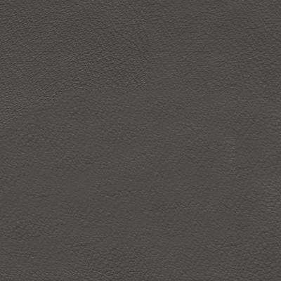 Soapstone Leather for Amia Chair by Steelcase (482)